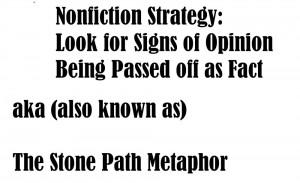 opinion fact stone path metaphor